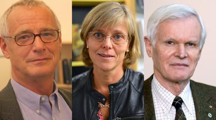 Sten Hechscher, Ingrid Carlberg och Carl Gahmberg är de externa utredare som KI:s styrelse utsett.