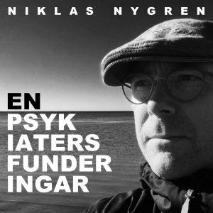 Niklasnygren